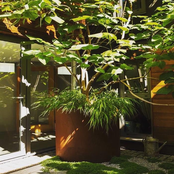Décoration de jardin avec bac cylindrique en acier Corten
