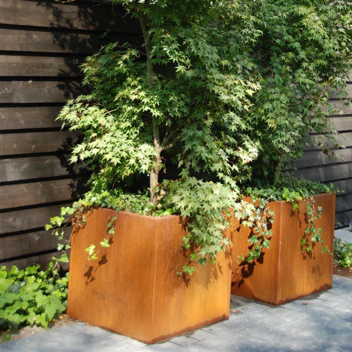 bac à fleurs carré en acier Corten avec érable