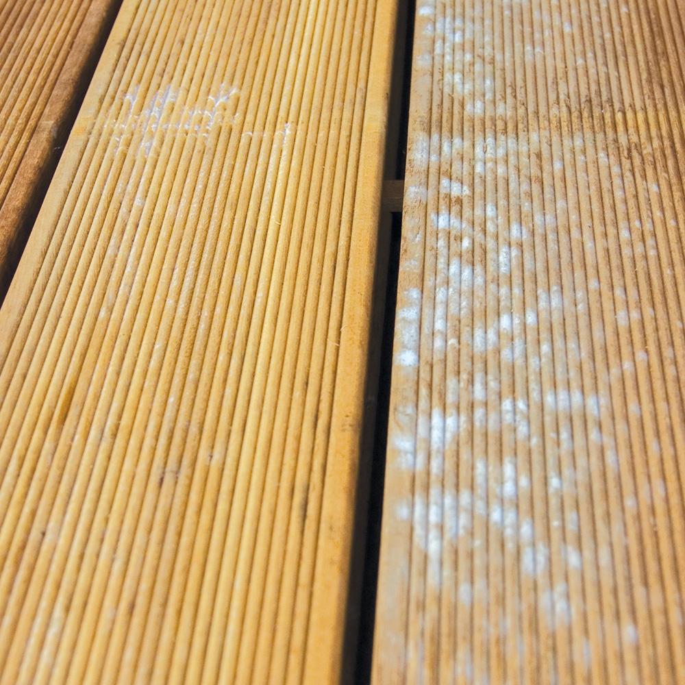 schimmel hout